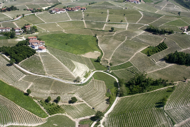 I cru di Barbaresco