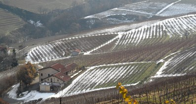 Le Langhe in inverno