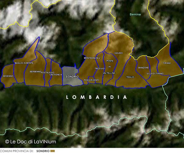 Le Doc della Lombardia: Sforzato di Valtellina o Sfursat di Valtellina