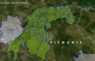 Le Doc del Piemonte: Collina Torinese