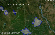 Le Doc del Piemonte: Lessona