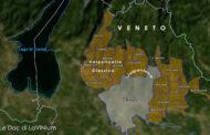 Le Docg del Veneto: Recioto della Valpolicella
