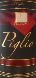 Cesanese del Piglio Pileum 2005