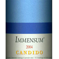Immensum 2004