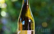 Pinot Bianco XY 2010