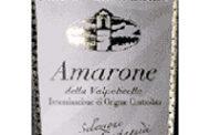 Amarone della Valpolicella Selezione Antonio Castagnedi 2002