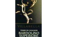 Bardolino Classico Superiore Terre di Cavagion 2005