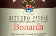 Oltrepo Pavese Bonarda 2004