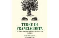 Terre di Franciacorta Bianco Vigna Bosco Alto 1998