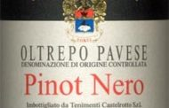 Oltrepo Pavese Pinot Nero 2000