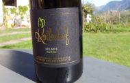 VINerdì Igp, il vino della settimana: Vigneti delle Dolomiti Cucol 2016, Kollerhof