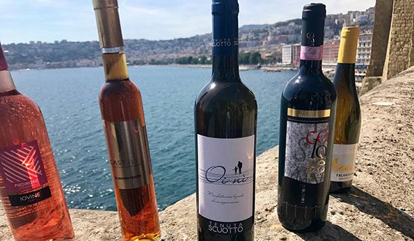 I vini premiati al Napoli Wine Challenge di Vitigno Italia