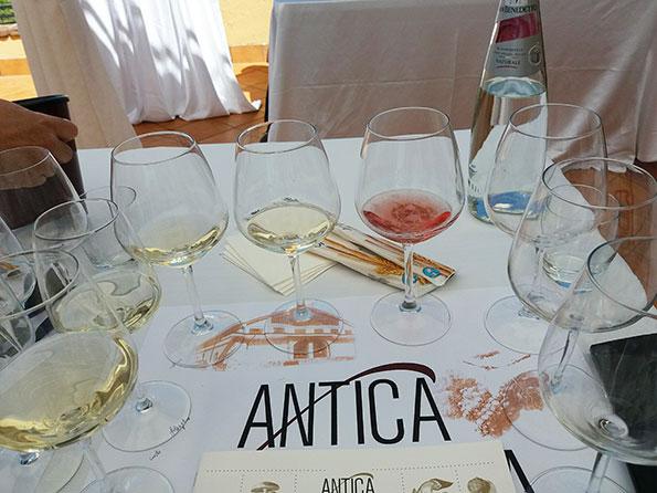 Degustazione vini Antica Hirpinia