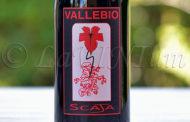 Merlot Scaja 2016 Vallebio: il primo di una lunga serie