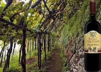 Costa d'Amalfi Ravello rosso Selva delle Monache della Casa Vinicola Ettore Sammarco
