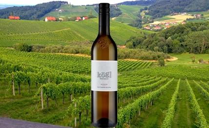 Sauvignon Blanc Ratsch 2013 weingut Kögl
