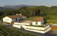 Un nuovo progetto nei Colli Orientali del Friuli: Tenimenti Civa