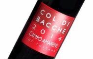 VINerdì Igp, il vino della settimana: Campo Amarene 2014 - Col di Bacche