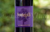 Produttori, un vino al giorno: Fontegalli 2012 - Fattoria Lavacchio