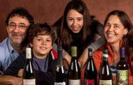 Amore Primitivo: dieci etichette (più una) del rosso pugliese che fa impazzire gli italiani