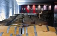 Una splendida giornata a Le Macchiole con Cinzia Merli fra Paleo e Messorio