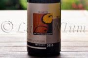 Produttori, un vino al giorno: Ormeasco di Pornassio Peinetti 2016 - Poggio dei Gorleri