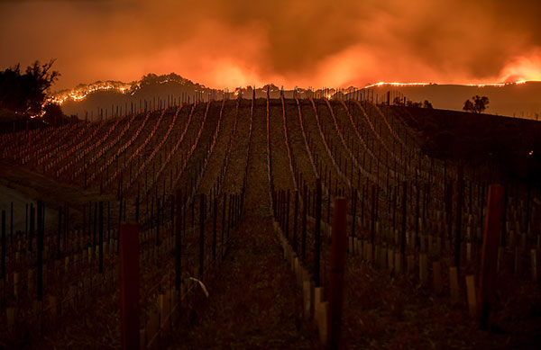Incendio in Napa Valley