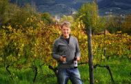 Fattoria San Vito: da libraio a viticoltore, Matteo Piccioli e i suoi vini