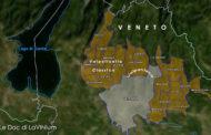 Doc e Docg del Veneto: Amarone della Valpolicella