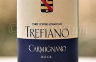 Carmignano Trefiano Riserva 2007