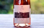Produttori, un vino al giorno: LaVinaRosa Rosato di Syrah 2016 - La Chiusa