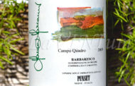 Barbaresco Campo Quadro 2009 - Punset: energia in movimento