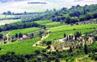 Fuligni: una bella terrazza di Montalcino sulla Cassia