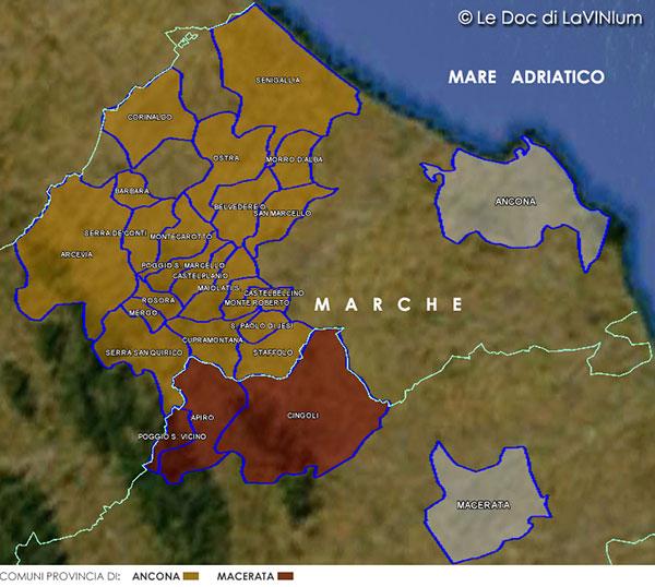 Mappa Verdicchio dei Castelli di Jesi Riserva