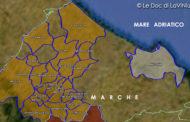 Le Doc e Docg delle Marche: Castelli di Jesi Verdicchio Riserva