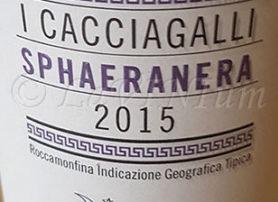 Sphaeranera 2015