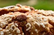 La colomba pasquale di Amalia Costantini, alias Pizza Mater... e altre meraviglie