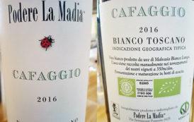 VINerdì Igp, il vino della settimana: Cafaggio 2016 - Podere la Madia