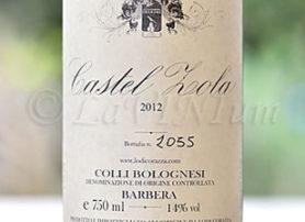Colli Bolognesi Barbera Castel Zola 2012