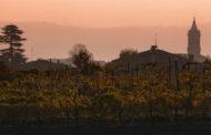 Lodi Corazza: l'arte del vino nei Colli Bolognesi