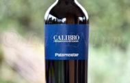 Aglianico del Vulture Calibro 2011 Paternoster: passano gli anni e il vino cresce ancora