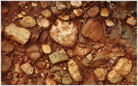 il suolo a Monteverro