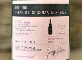 Terre di Cosenza Pollino 2015