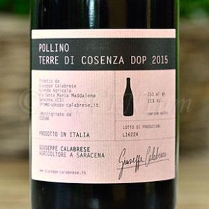 Terre di Cosenza Pollino 2015 Giuseppe Calabrese