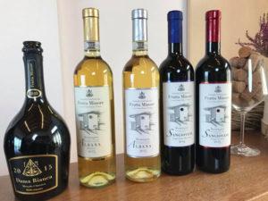 vini azienda Fratta Minore