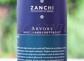 Amelia Grechetto Arvore 2017