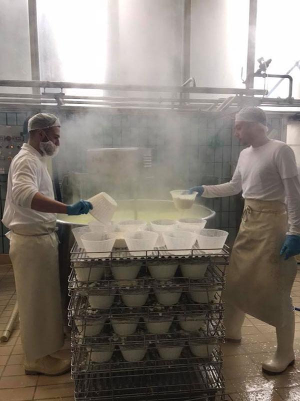 La lavorazione del formaggio presso l'azienda Comellini