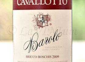 Barolo Bricco Boschis 2009