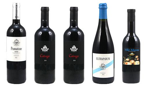 vini azienda Bisi