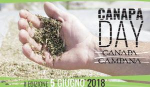 Canapa Day 2018